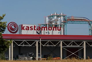 Tatarstan's Turkish investor to support Russia's woodworking industry